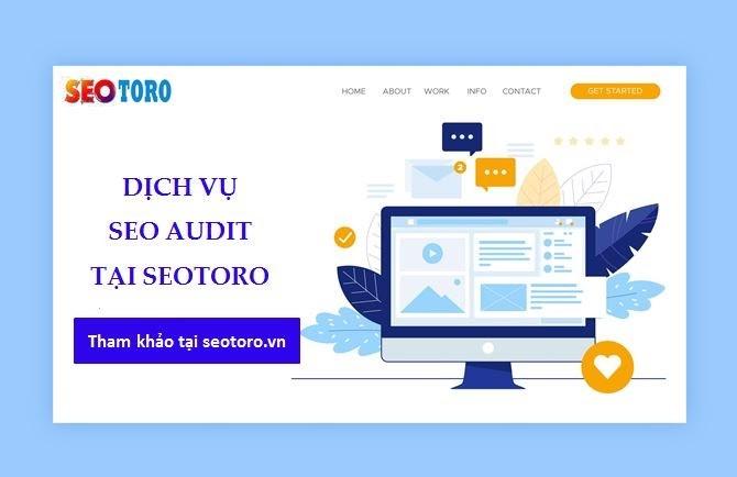 Dịch vụ SEO Audit tại Seotoro